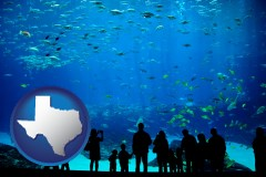 texas an aquarium