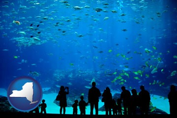 an aquarium - with New York icon