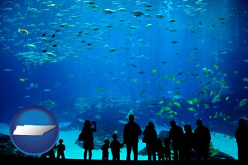 an aquarium - with Tennessee icon