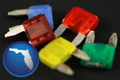 florida map icon and colorful automobile fuses