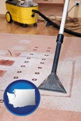 washington professional carpet cleaning equipment