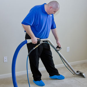 using steam cleaning equipment to clean a carpet