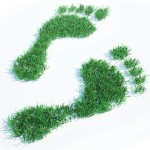 green grass footprints (an ecology symbol)