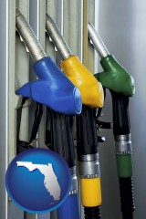 florida gasoline pumps