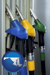 maryland map icon and gasoline pumps