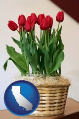 california map icon and a gift basket with red tulips