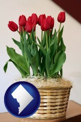 washington-dc map icon and a gift basket with red tulips
