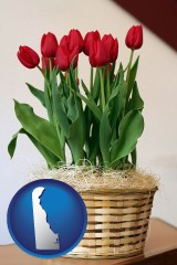 delaware a gift basket with red tulips