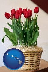 hawaii map icon and a gift basket with red tulips