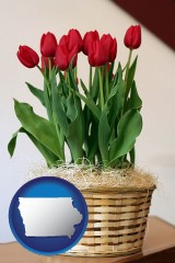 iowa map icon and a gift basket with red tulips