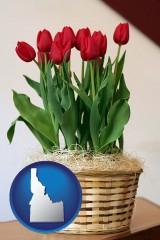 idaho map icon and a gift basket with red tulips