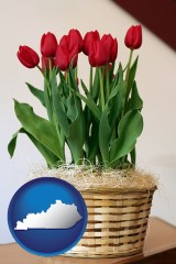 kentucky map icon and a gift basket with red tulips