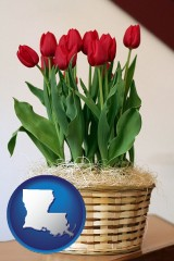 louisiana a gift basket with red tulips