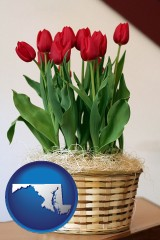 maryland map icon and a gift basket with red tulips