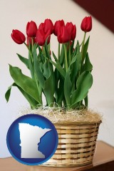 minnesota map icon and a gift basket with red tulips