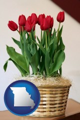 missouri a gift basket with red tulips
