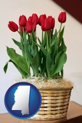 mississippi a gift basket with red tulips