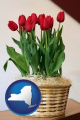 new-york map icon and a gift basket with red tulips