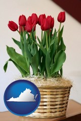 virginia map icon and a gift basket with red tulips