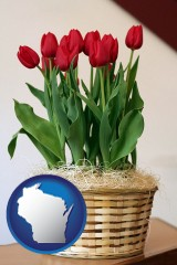 wisconsin map icon and a gift basket with red tulips