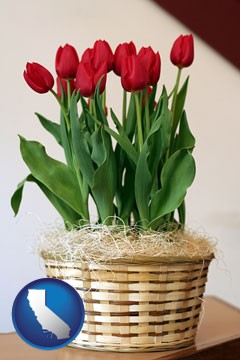 a gift basket with red tulips - with California icon
