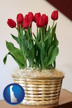 a gift basket with red tulips - with Delaware icon
