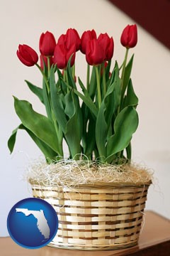 a gift basket with red tulips - with Florida icon