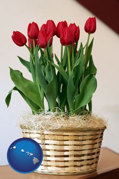 a gift basket with red tulips - with Hawaii icon
