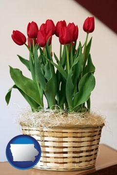 a gift basket with red tulips - with Iowa icon