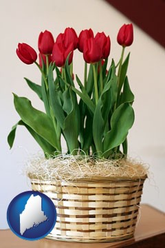 a gift basket with red tulips - with Maine icon