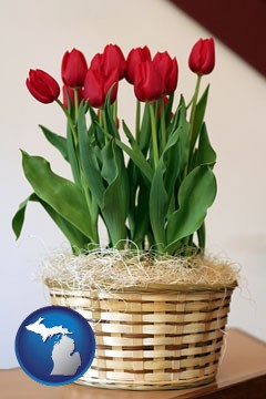 a gift basket with red tulips - with Michigan icon