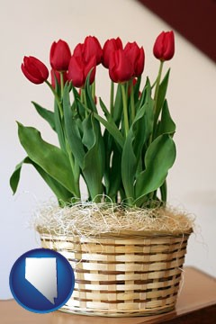 a gift basket with red tulips - with Nevada icon