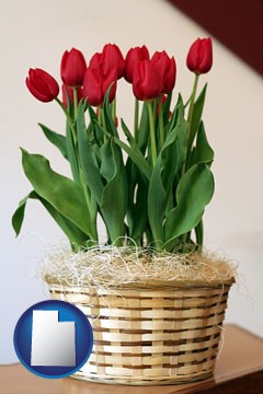 a gift basket with red tulips - with Utah icon