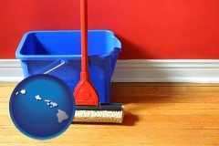 hawaii map icon and a bucket and mop on a hardwood floor