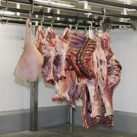 meat carcasses in a meat locker