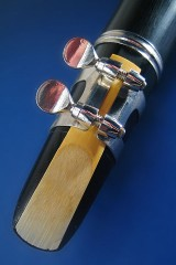 a clarinet reed