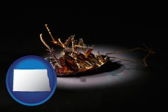 north-dakota map icon and a dead cockroach