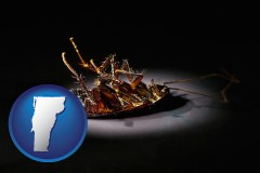 vermont map icon and a dead cockroach