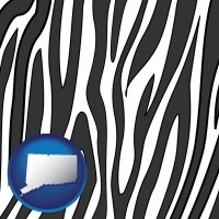 connecticut a zebra print
