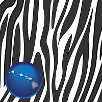 hawaii map icon and a zebra print