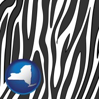 new-york a zebra print