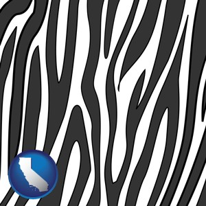 a zebra print - with California icon
