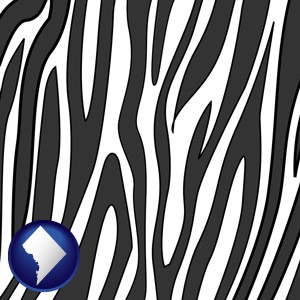 a zebra print - with Washington, DC icon