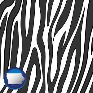 a zebra print - with Iowa icon