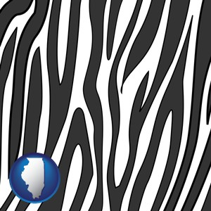 a zebra print - with Illinois icon