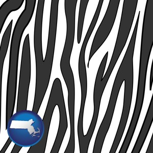 a zebra print - with Massachusetts icon