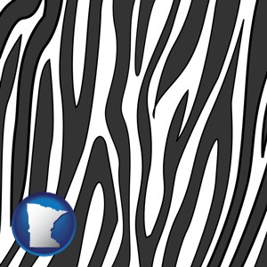 a zebra print - with Minnesota icon