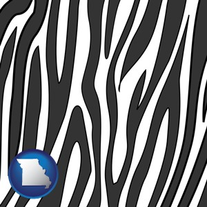 a zebra print - with Missouri icon
