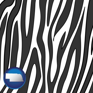 a zebra print - with Nebraska icon