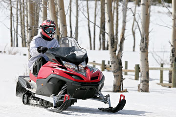 a snowmobile and white birches